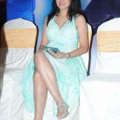 nisha-kothari-new-pics0