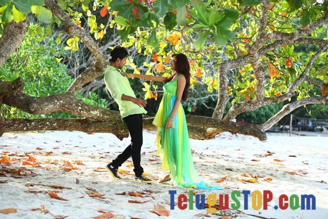 Paddanandi premalo mari movie stills- Photos,Spicy Hot Pics,Images,High Resolution WallPapers Download