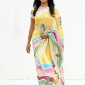 Pallavi Hot in Saree Stills