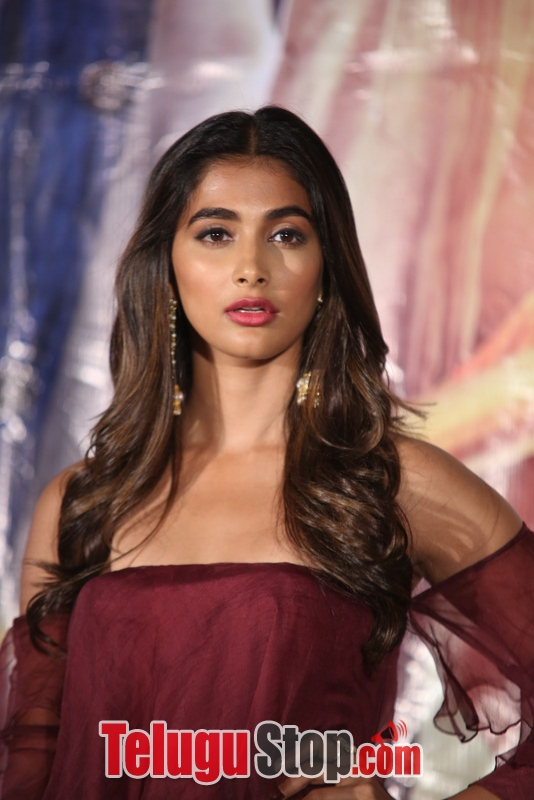 Pooja hegde latest photos 2- Photos,Spicy Hot Pics,Images,High Resolution WallPapers Download
