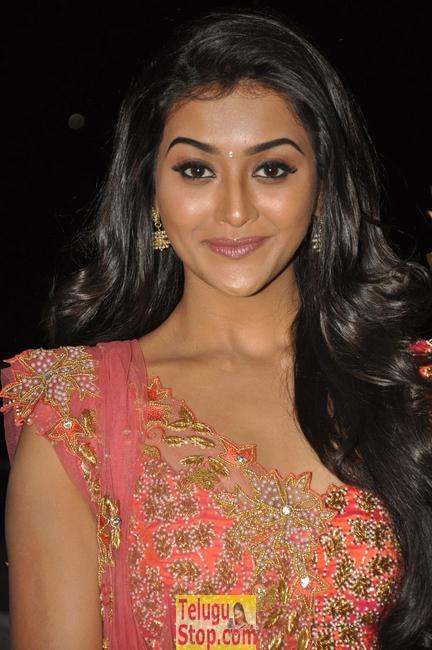 Pooja Jhaveri Stills-Pooja Jhaveri Stills--Telugu Actress Hot Photos Pooja Jhaveri Stills-