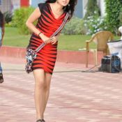 poonam-kaur-latest-images Pics,Spicy Hot Photos,Images