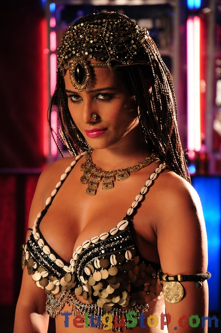 Poonam pandey new year stills- Photos,Spicy Hot Pics,Images,High Resolution WallPapers Download