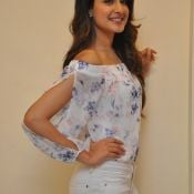 Pragya Jaiswal Latest Stills