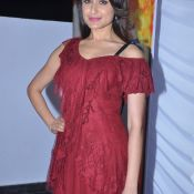 pragya-jaiswal-latest-stills05