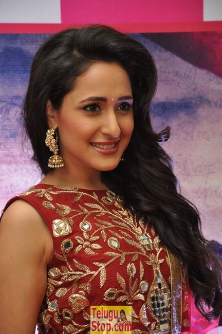 Pragya Jaiswal New Stills-Pragya Jaiswal New Stills--Telugu Actress Hot Photos Pragya Jaiswal New Stills-