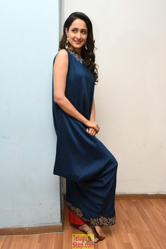 Pragya jaiswal new stills 3- Photos,Spicy Hot Pics,Images,High Resolution WallPapers Download