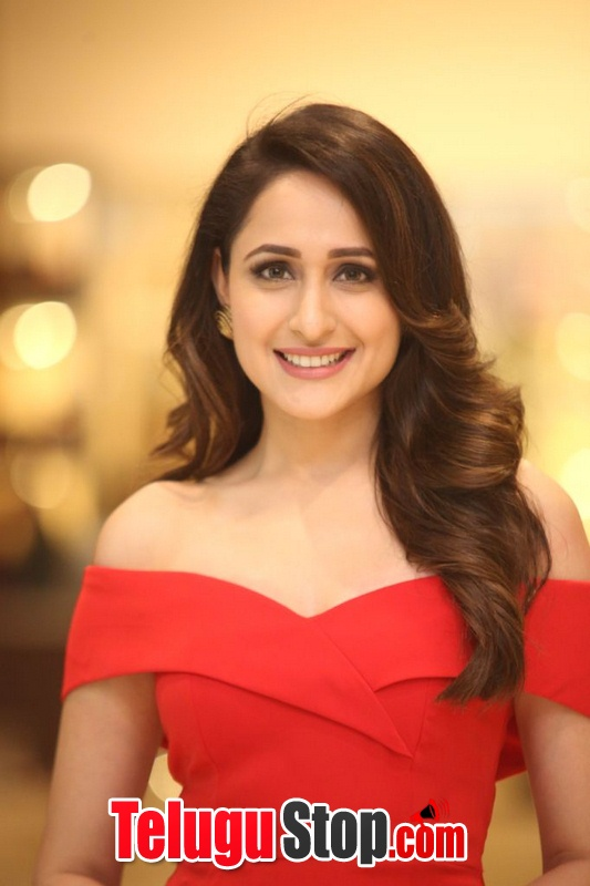 Pragya jaiswal new stills 7- Photos,Spicy Hot Pics,Images,High Resolution WallPapers Download