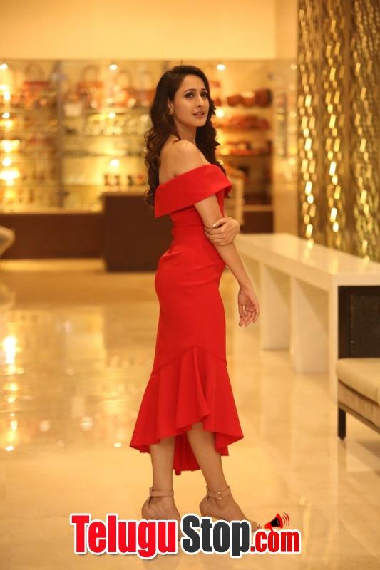 Pragya Jaiswal New Stills-