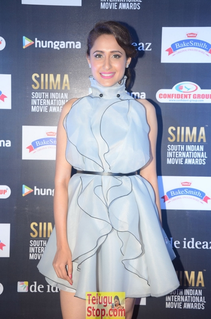 Pragya Jaiswal Stills-Pragya Jaiswal Stills--Telugu Actress Hot Photos Pragya Jaiswal Stills-