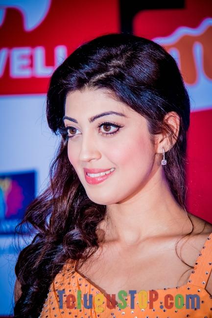 Praneetha at SIIMA Awards 2014-Praneetha At Siima Awards 2014--Telugu Actress Hot Photos Praneetha At Siima Awards 2014-