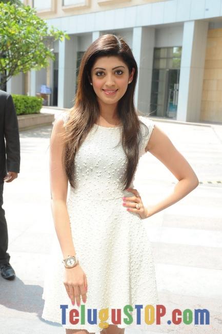 Pranitha Latest Pics-Pranitha Latest Pics--Telugu Actress Hot Photos Pranitha Latest Pics-