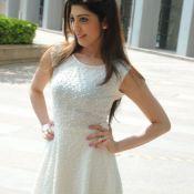 Praneetha Latest Gallery