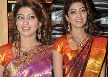 Pranitha latest stills- Photos,Spicy Hot Pics,Images,High Resolution WallPapers Download
