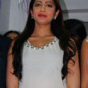 Pranitha Latest Stills-Pranitha Latest Stills- Photo 3 ?>