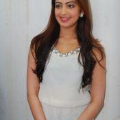 Pranitha Latest Stills-Pranitha Latest Stills- HD 11 ?>