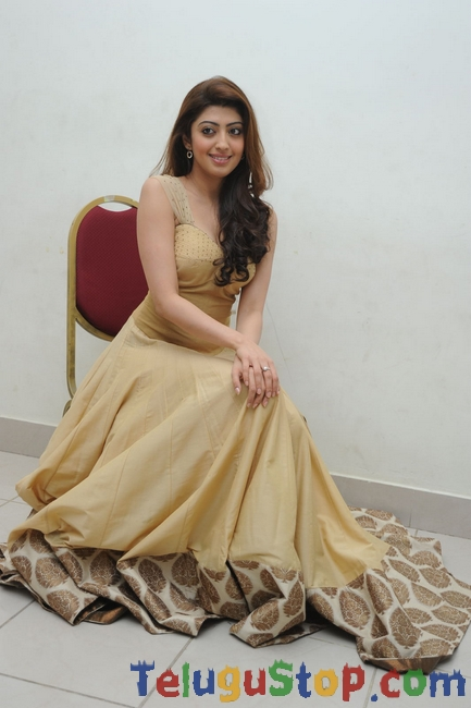 Pranitha latest stills 4- Photos,Spicy Hot Pics,Images,High Resolution WallPapers Download
