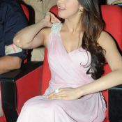 Pranitha Latest Stills-Pranitha Latest Stills- HD 10 ?>