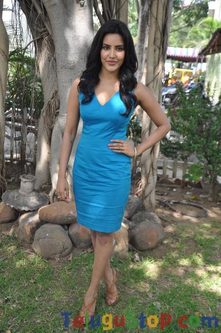 Priya Anand Latetst Stills-Priya Anand Latetst Stills-
