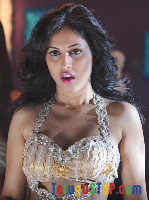 Priya Banerjee Stills-Priya Banerjee Stills--Telugu Actress Hot Photos Priya Banerjee Stills-