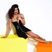 Priyanka Chopra Hot Pics---ప్రియాంక చోప్రా హాట్ పిక్స్ Photo 5 ?>