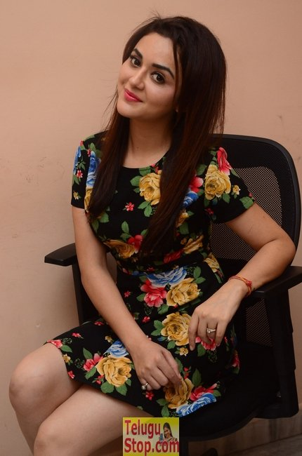 Ragini nandwani new pics- Photos,Spicy Hot Pics,Images,High Resolution WallPapers Download