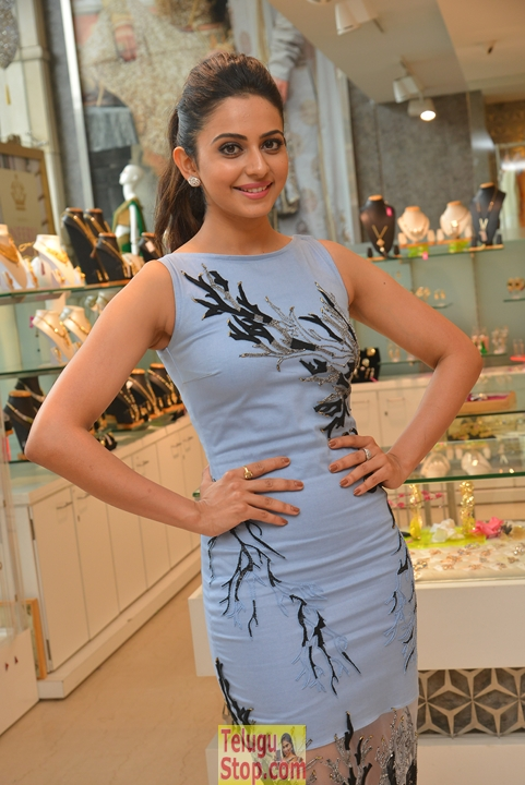 Rakul preet singh new stills 13- Photos,Spicy Hot Pics,Images,High Resolution WallPapers Download