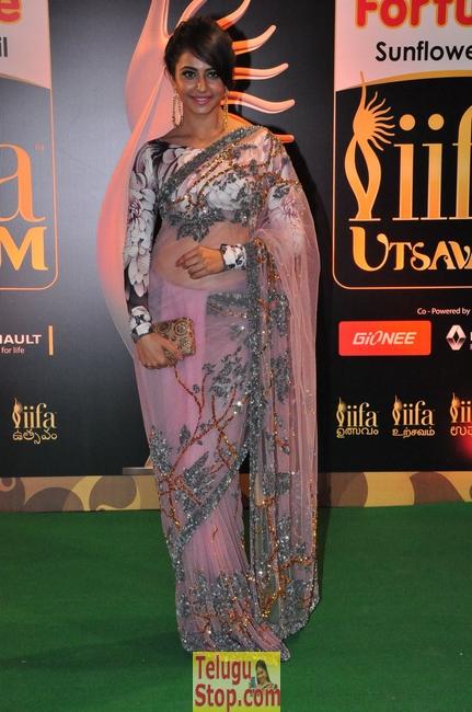 Rakul Preet Singh New Stills-Rakul Preet Singh New Stills--Telugu Actress Hot Photos Rakul Preet Singh New Stills-