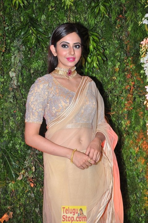 Rakul preet singh stills 9- Photos,Spicy Hot Pics,Images,High Resolution WallPapers Download