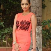 Reshmi Thakur Stills-Reshmi Thakur Stills- Photo 3 ?>