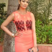 Reshmi Thakur Stills-Reshmi Thakur Stills- Photo 4 ?>