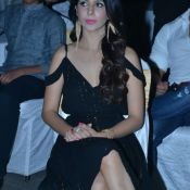 Rogue Movie Audio Launch 1