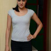 Sakshi Chaudhary New Stills