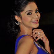 Sanam Shetty Latest Stills- Still 2 ?>