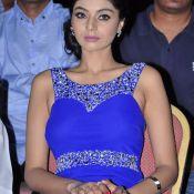 Sanam Shetty Latest Stills- Photo 5 ?>