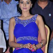 Sanam Shetty Latest Stills- Pic 8 ?>