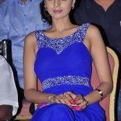 Sanam Shetty Latest Stills- HD 9 ?>