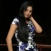 sanam-shetty-stills15