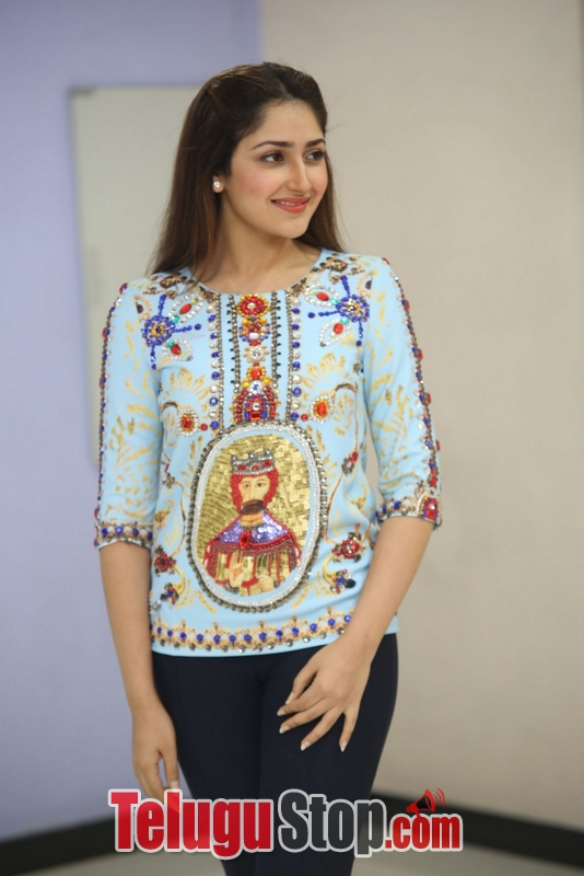 Sayesha saigal latest photos- Photos,Spicy Hot Pics,Images,High Resolution WallPapers Download