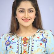 sayesha-saigal-latest-photos06