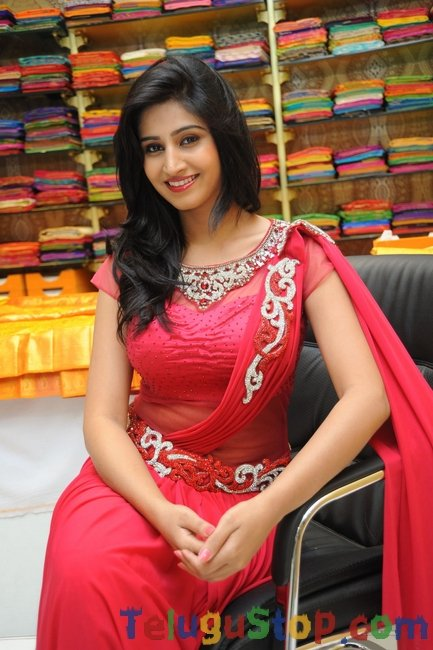 Shamili cute pics- Photos,Spicy Hot Pics,Images,High Resolution WallPapers Download