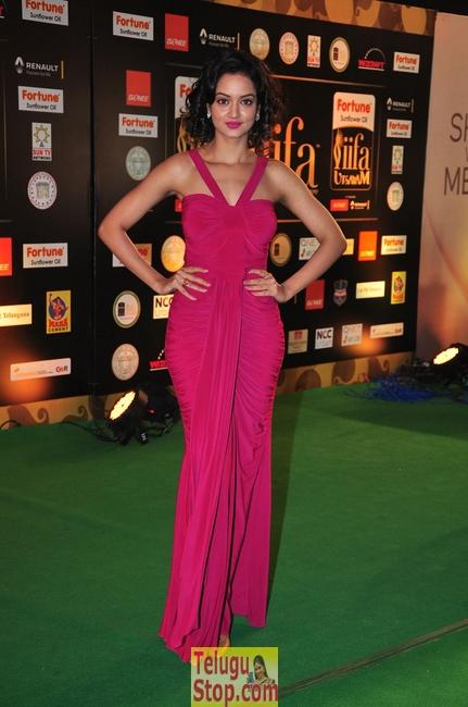 Shanvi New Pics-Shanvi New Pics--Telugu Actress Hot Photos Shanvi New Pics-