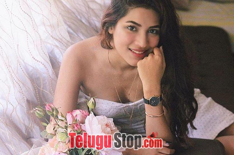 Shivani Singh Hot Stills-