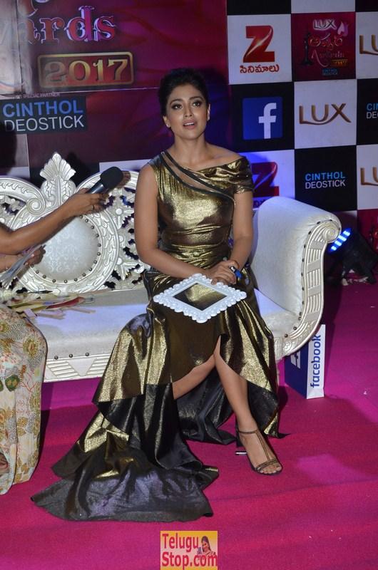 Shriya Saran Pics-Shriya Saran Pics--Telugu Actress Hot Photos Shriya Saran Pics-