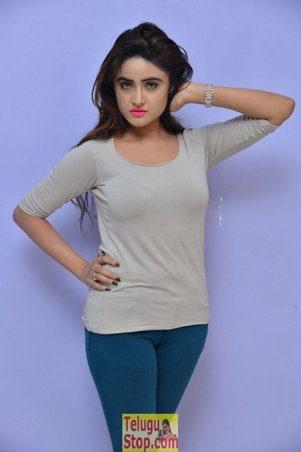 Sony charishta latest stills 2