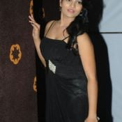 Soumya Stills