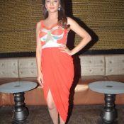 Heroine Surveen Chawla Pics