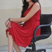 swetha-new-stills28