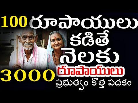 100 కడితే 3000 రూపాయిలు నెలకి పెంక్షన్-New Pension Scheme In India-