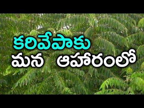 కరివేపాకు ఆరోగ్య రహస్యాలు ఆహారం లోకరివేపాకు ప్రాముఖ్యత Health Benefits Of Eating Curry Leaves Daily-Telugu Trending Viral Videos-Telugu Tollywood Photo Image